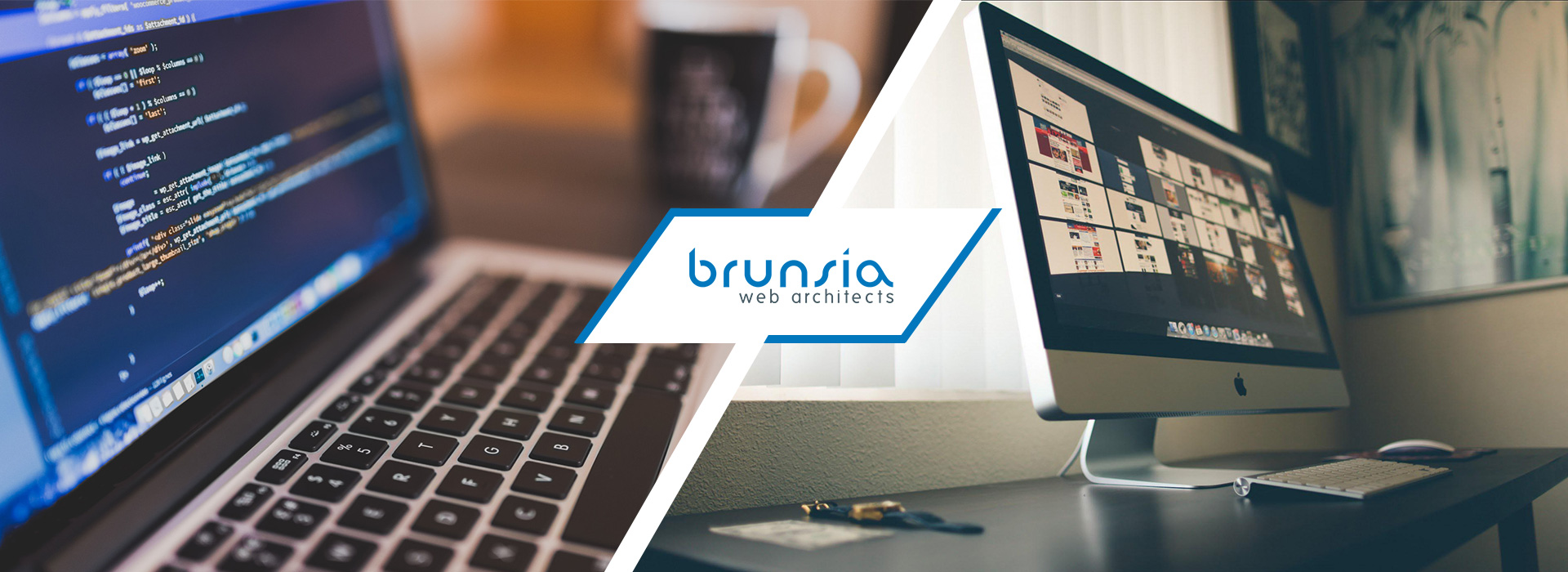 brunsia-new-homepage-banner